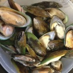 defrost mussels